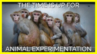 Time Is Running Out For Bogus Science