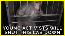 Meet the Young Activists Determined to End Testing on Animals