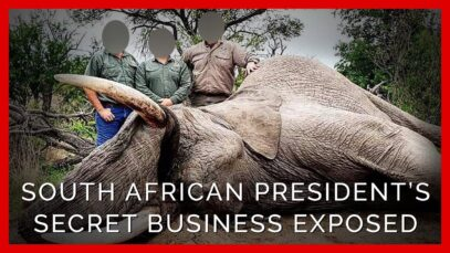 PETA Investigation: South African President Secretly Profits From Trophy Hunting