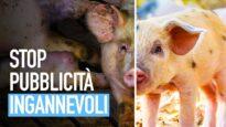 STOP PUBBLICITÀ INGANNEVOLI: segnala le bugie dell'industria alimentare
