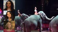 9 Celebrities Who Hate Animal Circuses