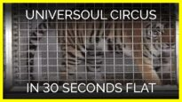 UniverSoul Circus in 30 Seconds Flat