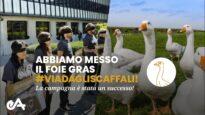 VITTORIA! Abbiamo messo il Foie Gras #ViaDagliScaffali