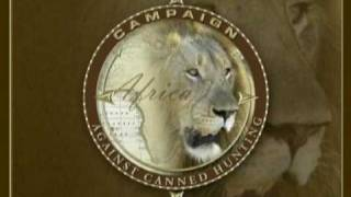 Canned hunting – caccia in scatola (anteprima)