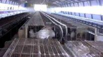 Carne da macello -  o animali da salvare? (capitolo 2 di 8: conigli)