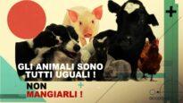 Gli animali sono tutti uguali