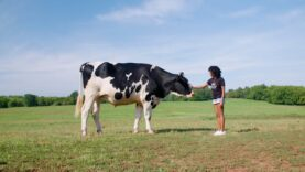 Mercy For Animals Is Disrupting the Factory Farming Industry