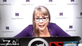 Eating for Your Health and to Avoid Pandemics Webinar