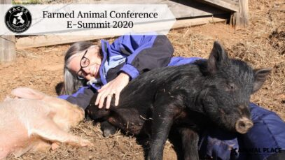Farmed Animal Conference E-Summit 2020 - Official Trailer