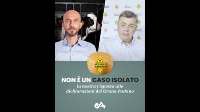 Non è un caso isolato: la nostra risposta al video di Grana Padano