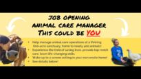 Now Hiring: Animal Care Manager