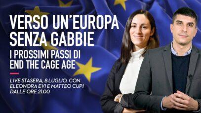 Verso un'Europa senza gabbie: i prossimi passi di End the cage Age