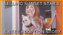 Chrishell Stause Shares Her Heartwarming Dog Adoption Story With PETA