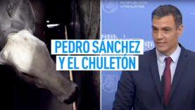 Pedro Sánchez y el CHULETÓN IMBATIBLE