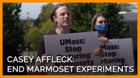 Casey Affleck Marches Across UMass Campus Calling for an End to Heartless Experiments on Marmosets