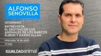 Entrevista en Voces Animales con el veterinario Alfonso Senovilla