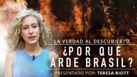 ¿Por qué arde Brasil? | La industria de la carne al descubierto