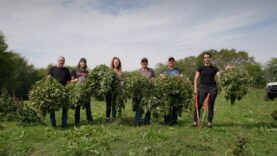 These Former Chicken Farmers Just Harvested Their First Acre of Hemp