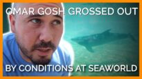 YouTuber Omar Gosh Gets Grossed Out by Conditions at SeaWorld