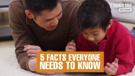 5 Facts Everyone Needs to Know About Keeping the Earth and Yourself Healthy