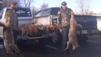 Are Wildlife Killing Contests Being Held in Your State?