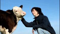 Hof Butenland – Free Calf