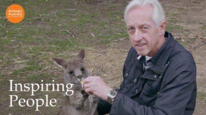 Ian has rescued over 700 Australian wild animals