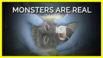 Monsters Are Real and We Live Among Them