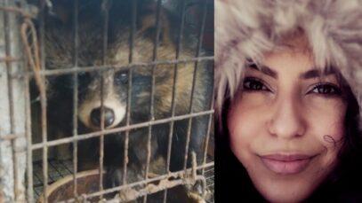 This is a fur farm