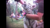'Tiger King' - Joe Exotic: Undercover Investigation Footage